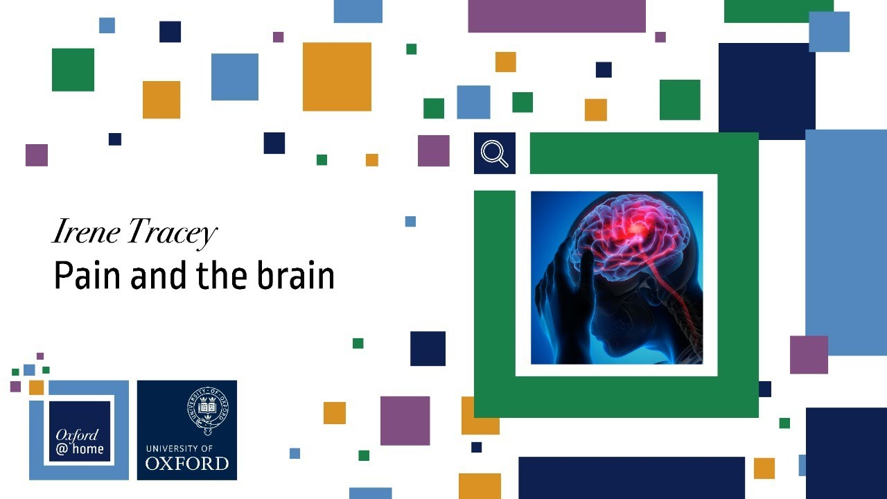 Pain and the Brain LIVE (with Prof Irene Tracey)