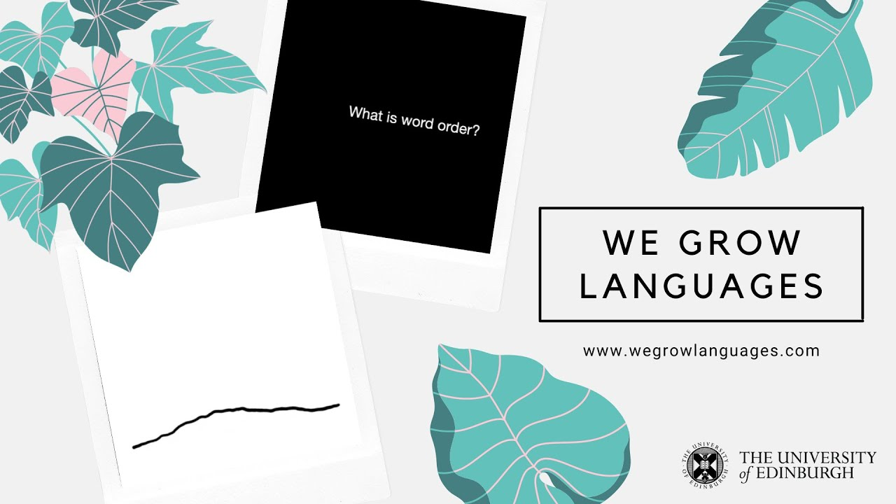 We grow languages - What is word order