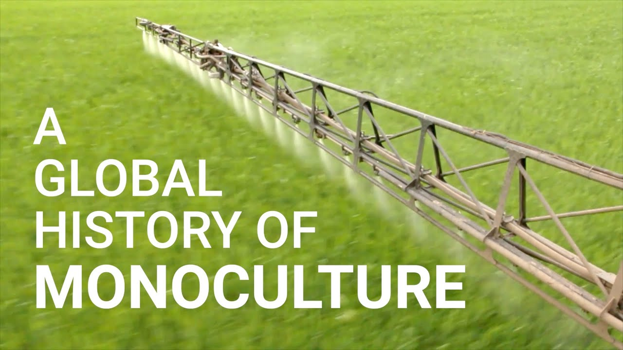 A Global History of Monoculture