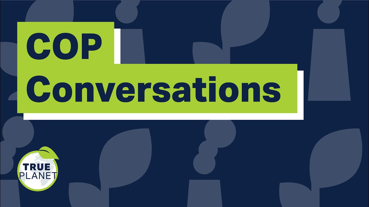 Why Net Zero (and what is it)? 'COP Conversations' Series.